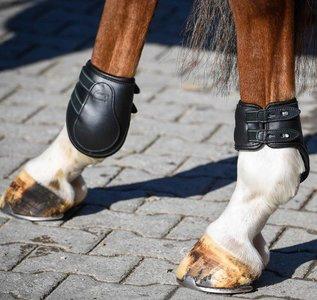 AMERIGO Fetlock Boots Stud